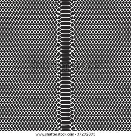 Vector Seamless rare Python snake pattern in black. Editable! - stock vector