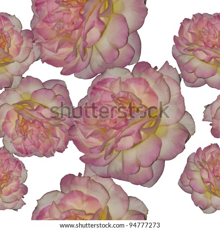 Vector seamless rose background - stock vector