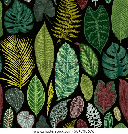 Vector seamless vintage floral pattern. Exotic leaves. Botanical classic illustration. Vivid