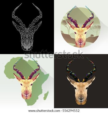 springbok antelope stock images royalty free images vectors shutterstock. Black Bedroom Furniture Sets. Home Design Ideas