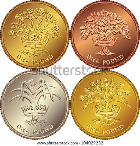 Pound Currency Coin Money Gold Coin One Pound