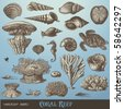 vector set: coral reef - variety of sea-design elements including different corals, shells and animals - stock photo