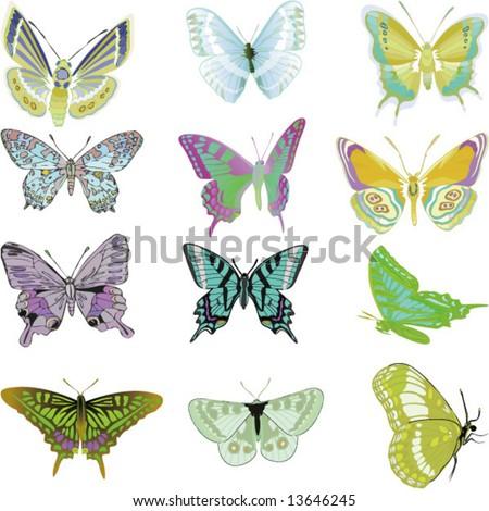 vector Set of butterflys - stock vector
