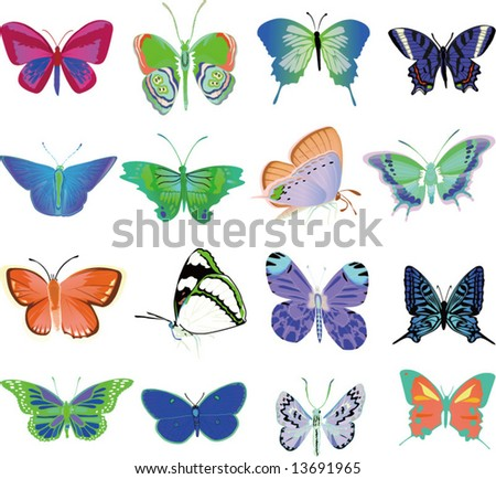 Vector set of butterflys