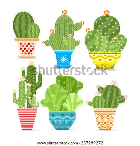 Vector set of cacti. The cactus blossoms. Object isolated on white background. - stock vector