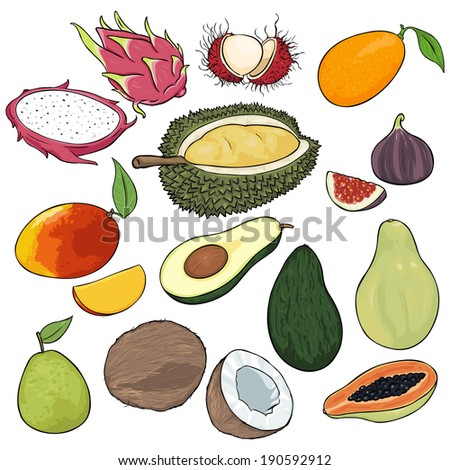 Vector Set of Cartoon Exotic Fruits - stock vector
