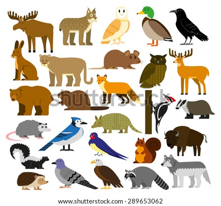 Vector Set Of Cartoon Forest Animals Isolated - stock vector