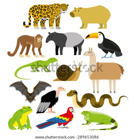 Vector Set Of Cartoon South American Animals Isolated - stock vector
