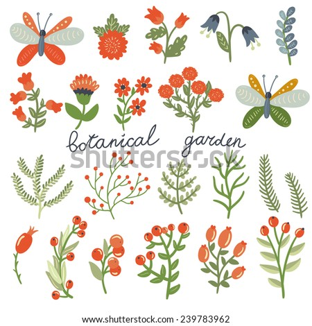 Vector set of cute hand drawing floral elements: branches, leaves, berries, flowers and butterflies on the white background. Big natural set. Botanical garden collection. - stock vector