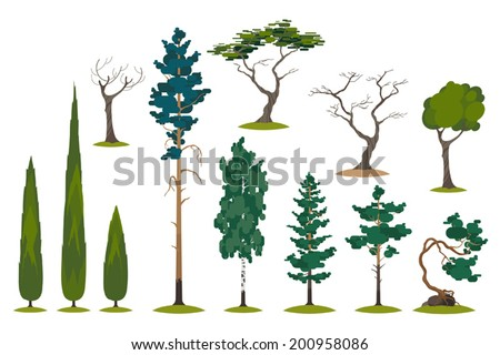 Vector set of different evergreens and trees - stock vector
