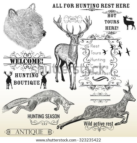 Vector set of engraved hand drawn animals deer, bear, fox and calligraphic frames all for hunting and active rest design - stock vector