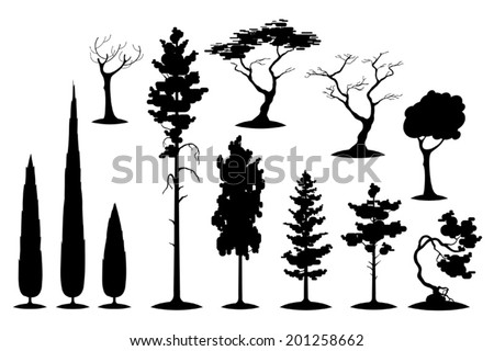 Vector set of evergreens and various trees silhouettes - stock vector