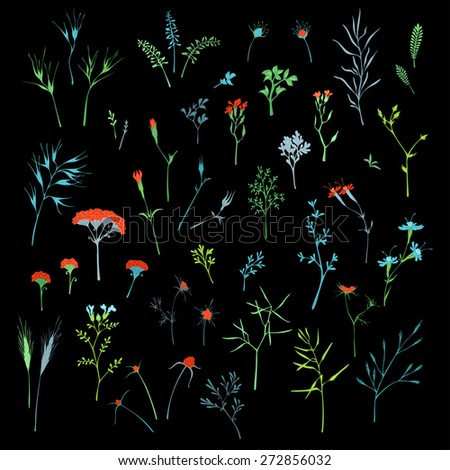 Vector set of floral design elements on black background. Various hand-drawn grass and floral elements for your design. - stock vector