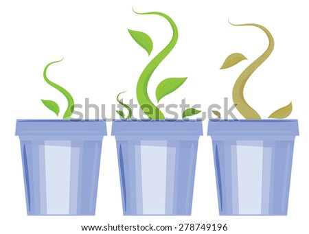 Vector set of flower pots. Shoots and death of plants - stock vector