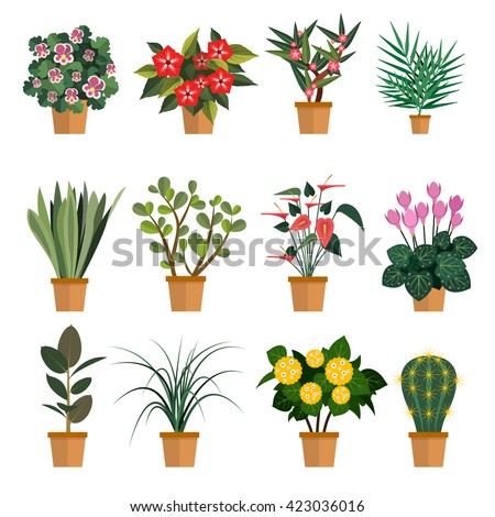 Vector set of flowers. Illustration with different types of pot flower icons isolated on white background.