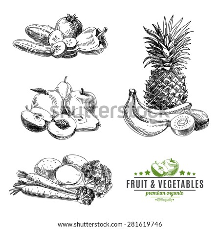 Vector set of fruit and vegetables. Healthy food. Vector illustration in sketch style. Hand drawn design elements. - stock vector