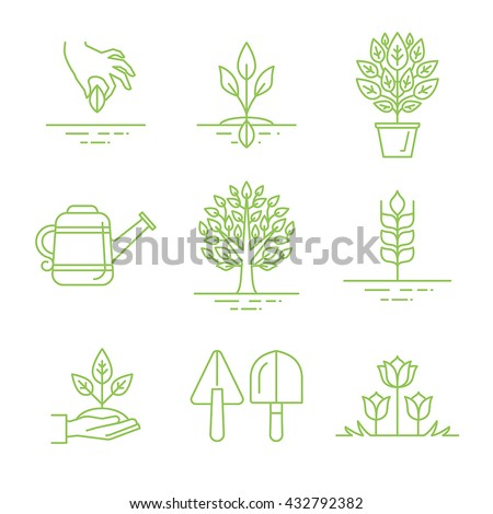 Vector set of gardening icons and linear illustrations - growing sprouts and plants from the seed to the tree - gardening tools and concepts