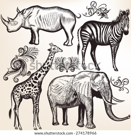 Vector set of hand drawn detailed African animals - stock vector