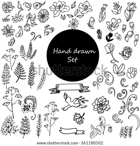 Vector set of hand drawn of flowers, leaves, twigs, squiggles isolated on white background. Outline flowers are element for design. Hand-drawn contour lines.