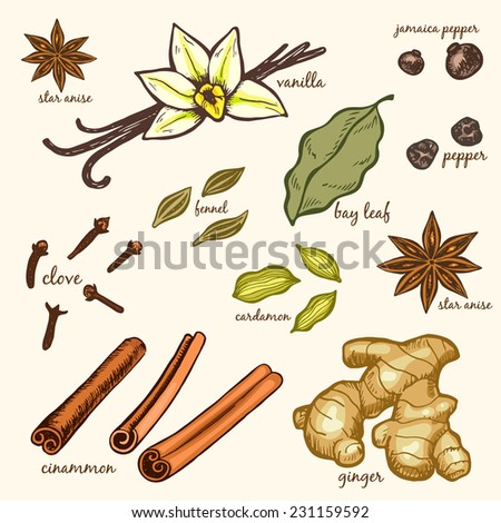 Vector set of hand drawn species. Colored version. - stock vector