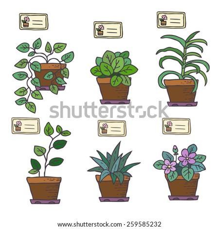 Vector set of houseplants in pots. - stock vector