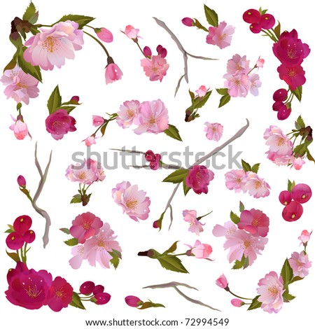 Vector set of isolated gentle spring flowers and branches for your design - stock vector