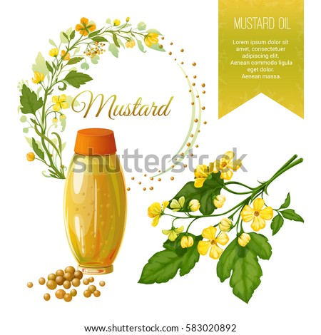 mustard seed stock images royaltyfree images amp vectors