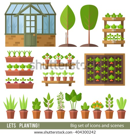 Vector set of plants and scenes. Greenhouse, beds, pots and shelves with plants. Garden. - stock vector