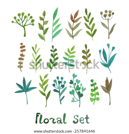 Vector set of plants in watercolor style. Grass, petals, berries and blossoms. - stock vector