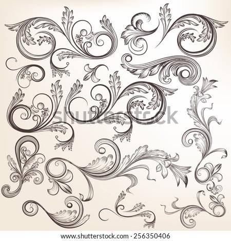 Vector set of swirl elements for design. Calligraphic vector - stock vector