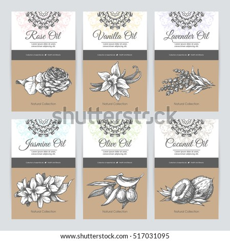 Vector Set Templates Packaging Cosmetic Label Stock Vector ...