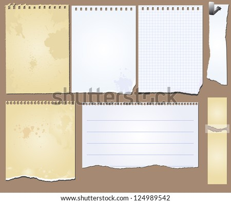 Vector set of the grunge scrapbooks tablets and papers - stock vector