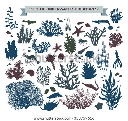 Vector set of underwater sea creatures - coral reef, fish, seashells and starfish.  - stock vector