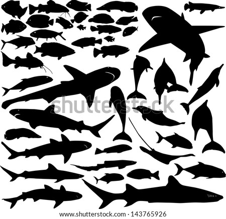 Vector set of various fish silhouettes - stock vector