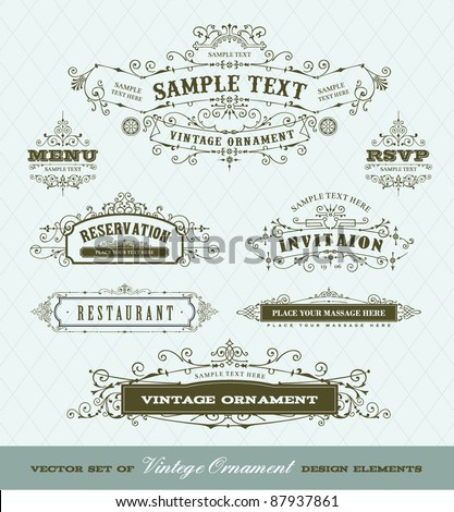 vector set of vintage ornaments - stock vector