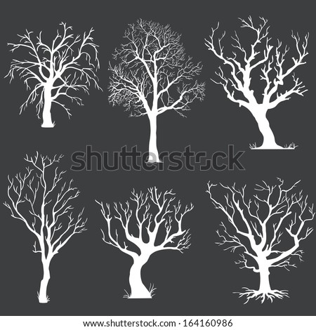 vector set of white bare trees silhouettes  - stock vector