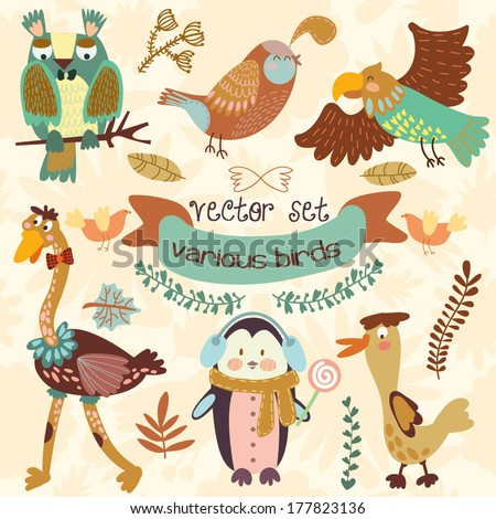 Vector Set of  with ?ute various birds.Penguin, ostrich, eagle, owl, duck, quail, bird .(All objects are isolated groups so you can move and separate them) - stock vector