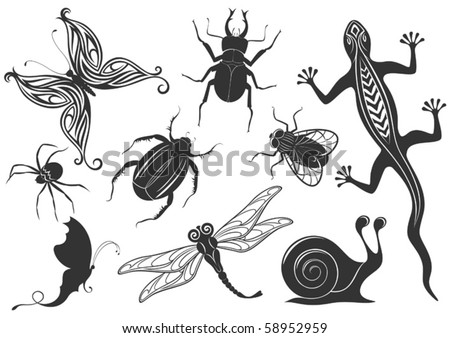 vector set: Snail, lizard and insects
