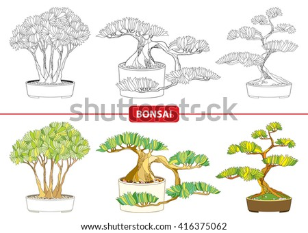 Vector set with ornate Bonsai tree in black and in color isolated on white background. Miniature ornamental tree grown in a pot. Traditional Japanese symbol in contour style for coloring book. - stock vector