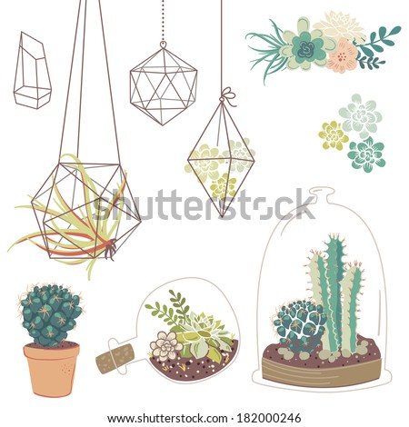 Vector set with succulents, flowers and glass terrariums - stock vector