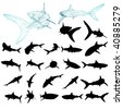 vector shark silhouette set - stock photo