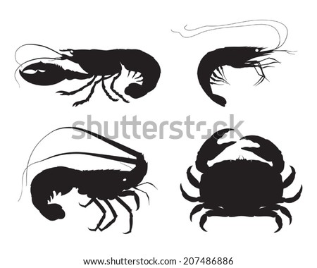 Vector shrimp, lobster, crab and spiny lobster silhouettes on white background - stock vector