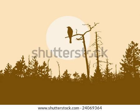 vector  silhouette bird on tree - stock vector
