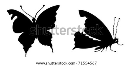 vector silhouette butterfly on white background - stock vector