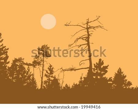 vector silhouette dry tree in wild wood - stock vector