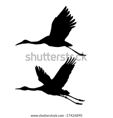 vector silhouette flying cranes isolated on white background - stock vector