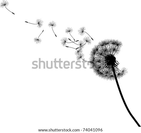 Vector silhouette graphic illustration depicting dandelion seed dispersal - stock vector