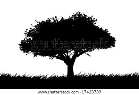 Vector silhouette of a tree in a meadow - stock vector