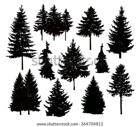 Vector silhouette of different pine trees. Can be used as poster, badge, emblem, banner, icon, sign, decor... - stock vector