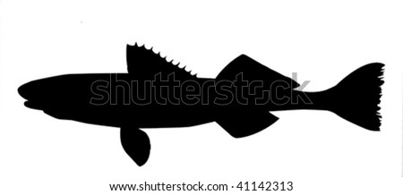 vector silhouette of fish on white background